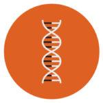 DNA Circle Orange